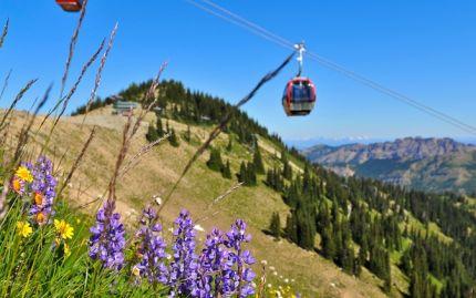 Crystal Mountain Day Trip (including the Mt Rainier Gondola)
