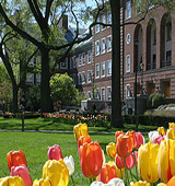 CUNY Brooklyn College Graduate School