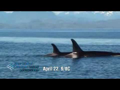 Jean-Michel Cousteau: Ocean Adventures | Killer Whale | P...