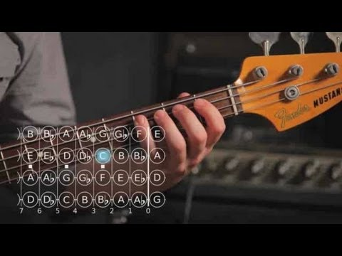 Bass Scales: How to Play the A Sharp/B Flat Major Scale