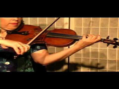 Violin Lesson - Song Demonstration -Did You Go to the Barney
