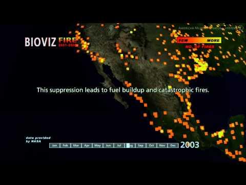 Science Bulletins: Global Fires 2001- 2005
