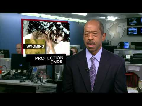 News Wrap: Bernanke Stops Short of Announcing Stimulus Plan