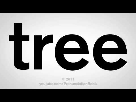 How To Pronounce Tree