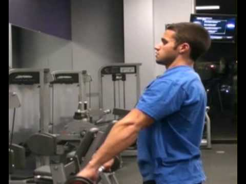 Frontal Delt Raises, Straight Arm, Small Barbell, Side : BeYourTrainer.com