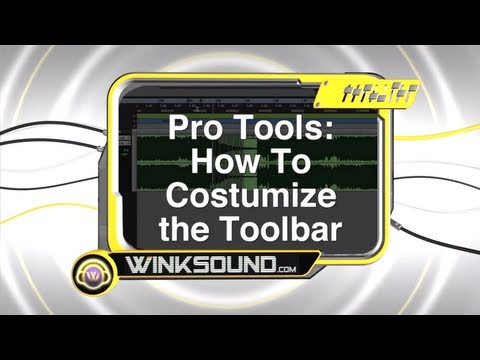 Pro Tools: How To Customize the Tool Bar | WinkSound