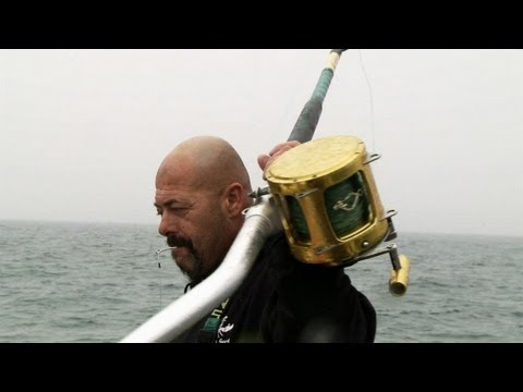 Wicked Tuna - Following the Leader