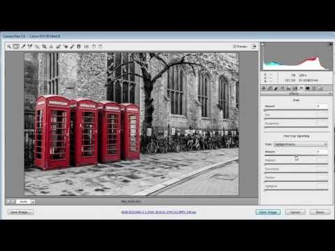 Simple Selective Colour ~ Photoshop/Camera RAW