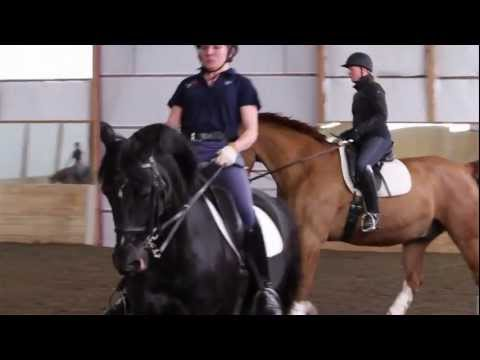 MEDAL QUEST | MEET THE ATHLETE - EQUESTRIAN Wendy Fryke | PBS