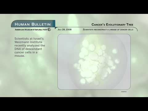 Science Bulletins: Cancer's Evoluntionary Tree