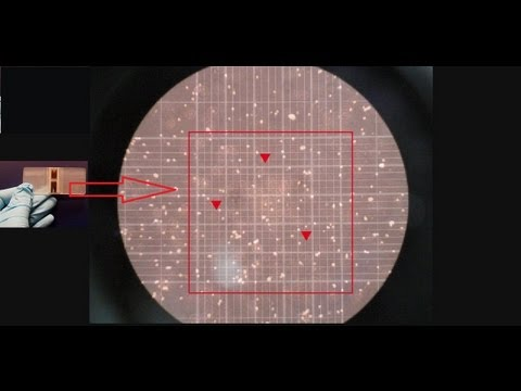Haemocytometer - Counting of cells [Amrita University]