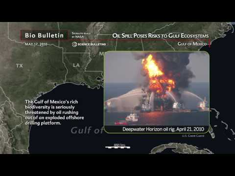 Science Bulletins: Oil Spill Poses Risks to Gulf Ecosystems