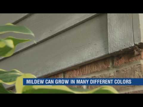 How to Troubleshoot Exterior Paint Problems