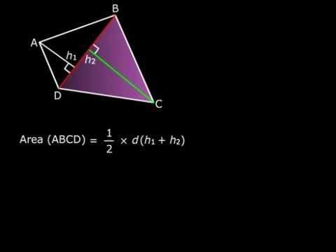 Area of a Quadrilateral - Class VIII Maths Area of Quadrilaterals and Polygons Tutorials