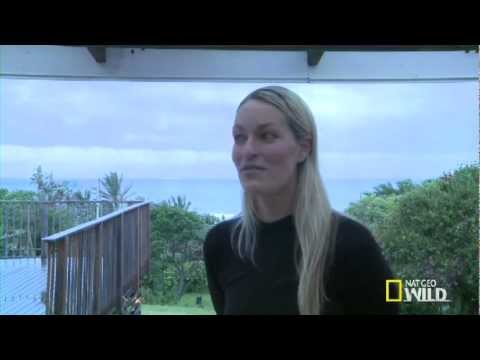 Olivia Symcox and Shark-Attack Survivor Discuss Sharks