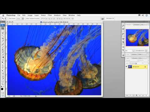 Total Training for Adobe Photoshop CS3: Essentials Ch8 L2. Using Rulers