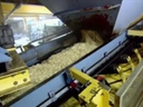 How It's Made- Beet Sugar