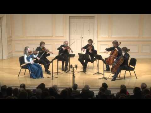 Salzburg Hyperion Ensemble Performing Strauss, Schoenberg & Brahms