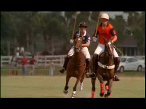 NATURE | Horse and Rider | Rio's Big Polo Match | PBS