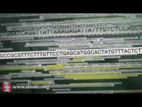 Human Genome Project Sequencing: Public Project