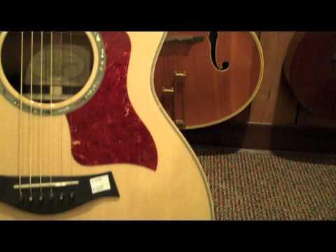 Taylor Guitars 814CE Review
