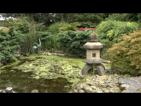 How To Create Japanese Gardens
