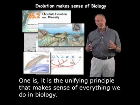 Kenneth Miller (Brown): Evolution, Why it Matters with English Subtitles