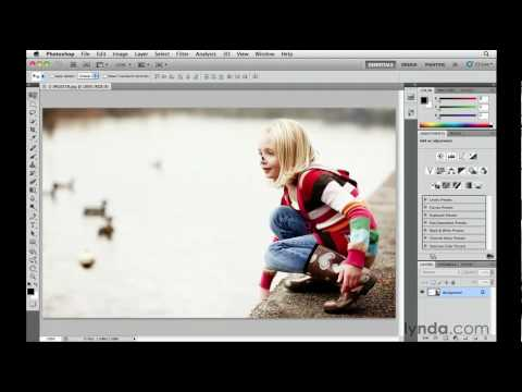What is Adobe Bridge? | lynda.com overview