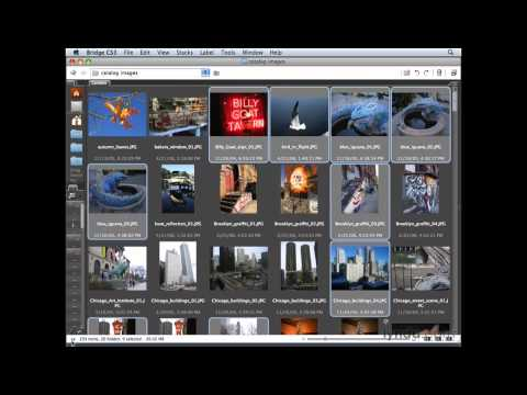 Photoshop Elements: Viewing and selecting images  | lynda.com