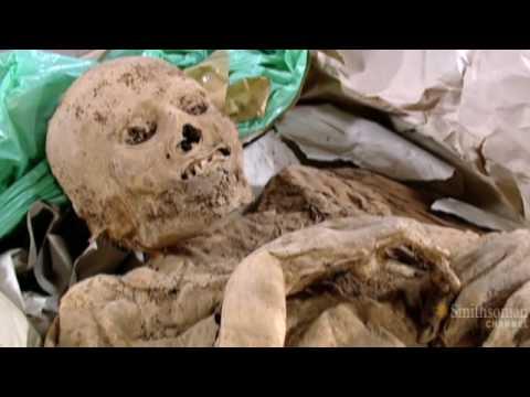 Tomb Detectives: Plague Mummies
