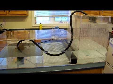HOW IT WORKS: DIY wet/dry filter