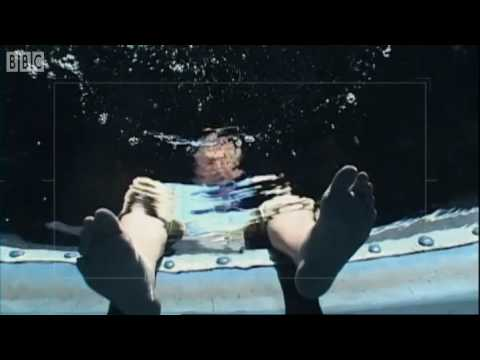 Introduction to Roboshark - Smart Sharks - BBC Earth