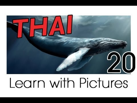Learn Thai with Pictures -- Marine Animals