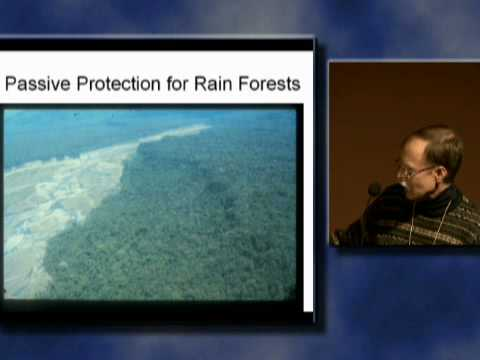 Will the Rainforest Survive? New Threats and Realities in the Tropical Extinction Crisis. Part 1