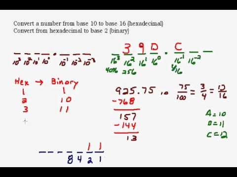 Convert Between Base 10 and Hexadecimal and Binary Numbers
