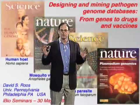 David Roos (U Penn) Part 3A: Designing and mining pathogen genome databases