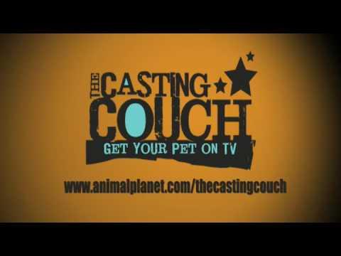 Casting Call*