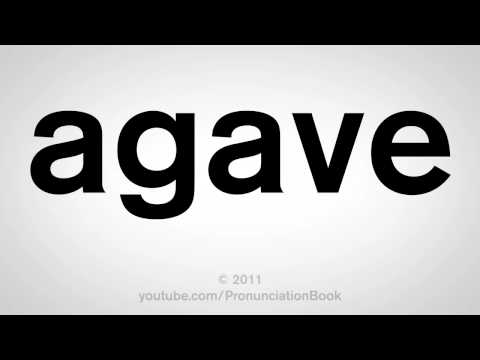 How To Pronounce Agave