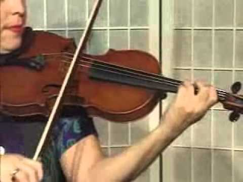 Violin Lesson - How To Play Danman's Print Library # 100