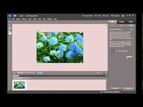 Photoshop Elements tutorial: The Guided Photo Edit tools | lynda.com