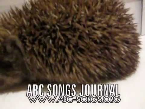 ABC song Olympic games for babies and toddlers after class nature fun video by ABC songs journal