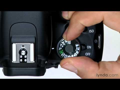 Canon Rebel T3i overview: Setting the auto mode | lynda.com