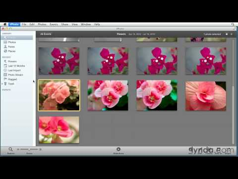 Aperture tutorial: Understanding the unified library for iPhoto and Aperture | lynda.com