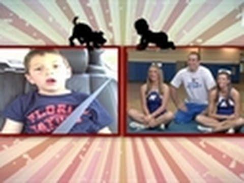 David After Dentist | Puppies vs. Babies