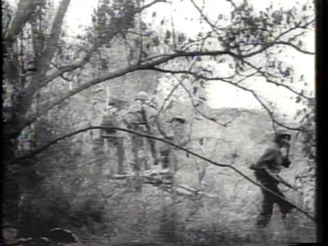 Report on Vietnam 1965 Newsreel