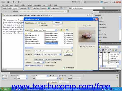 Dreamweaver CS5 Tutorial Using Background Images Adobe Training Lesson 4.7