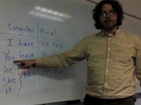 """The verb """"have"""" - Lesson Nine"""