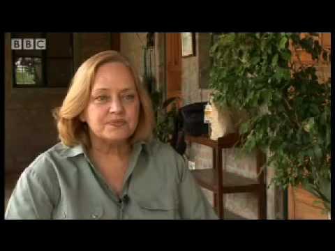 Sariska tiger extinction scandal - Battle to save the tiger - BBC wildlife & animals