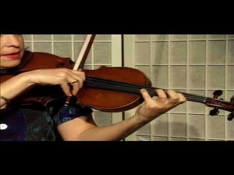Violin Lesson - Octaves, Harmony, and Double Stops