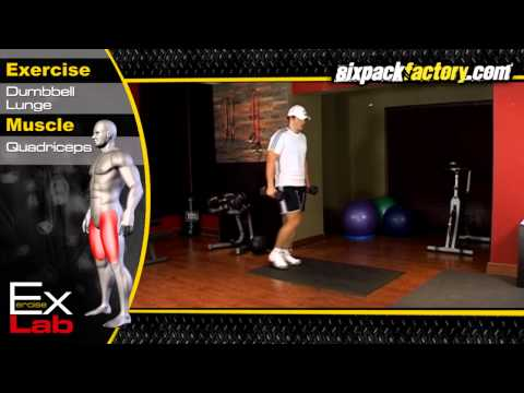 Dumbbell Lunges : Best Leg Exercises ( Quadriceps Exercises )